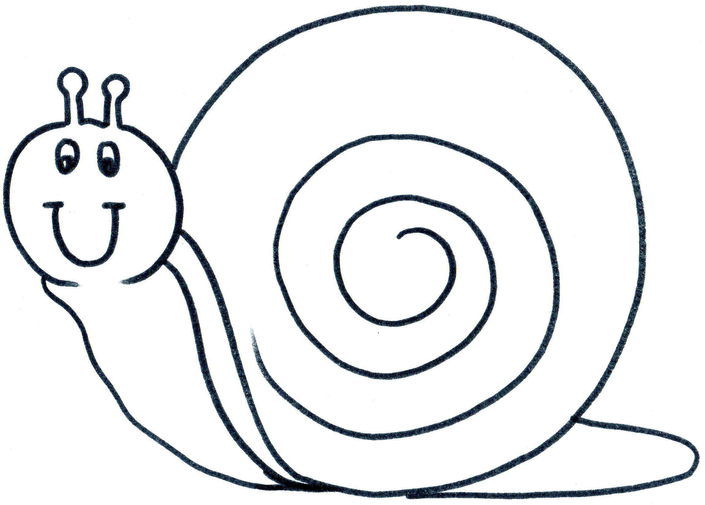 Inspirant Escargot Image Coloriage
